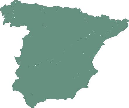 https://serproavi.com/wp-content/uploads/2020/11/mapa_españa.png